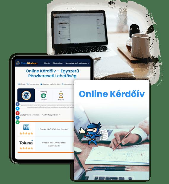 online pénzkeresési program
