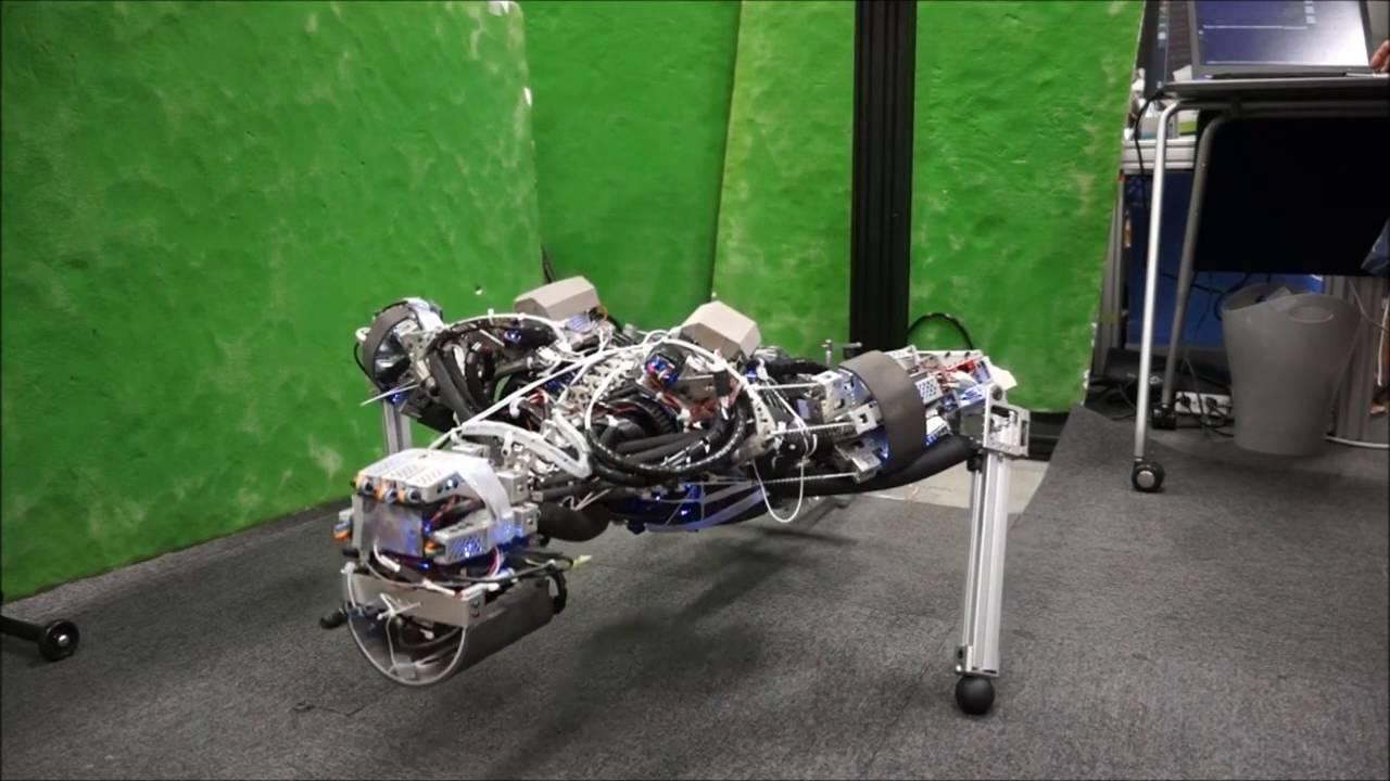 a robot kiérdemli magát