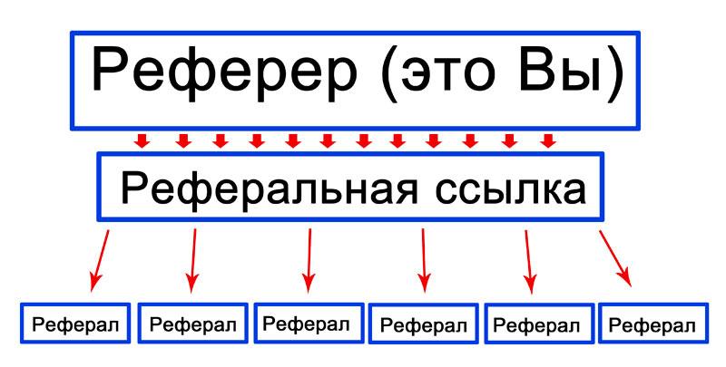 hálózat és a jövedelem)