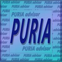 kereskedési robot puria)
