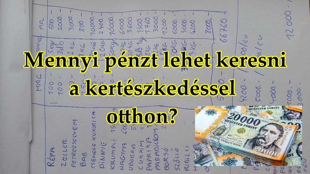 hogyan lehet pénzt keresni egy héten)