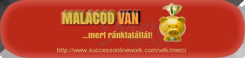 pénzkeresési program a Kelet Interneten 3)