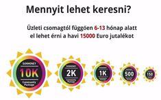 jövedelem üzleti profit internet)