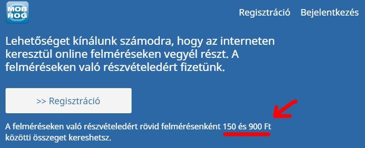 van-e valódi módja az interneten való pénzkeresésnek?)